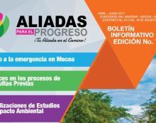 Boletín Informativo Digital Aliadas para el Progreso SAS