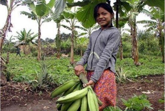 Putumayo se suma a los encuentros de Compras Locales