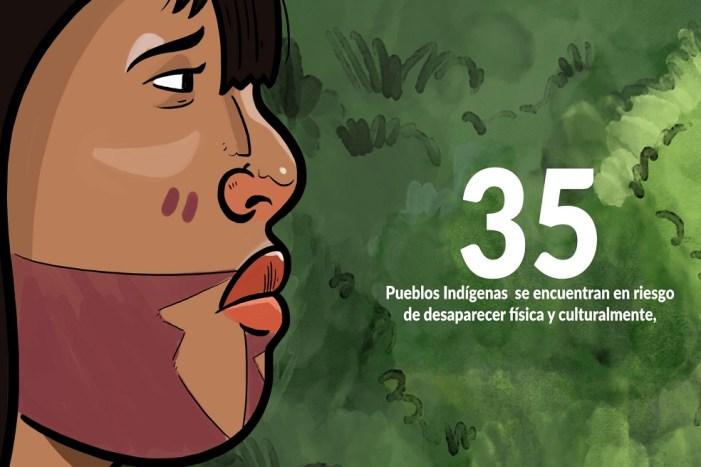 Las apps para aprender sobre la sabiduría indígena colombiana