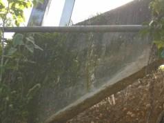 Un tubo de Ecopetrol atraviesa este puente.