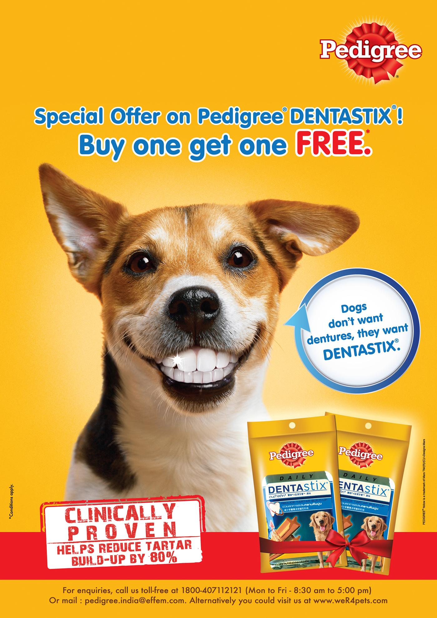 Pedigree Dentastix Summer Campaign Posters on Behance