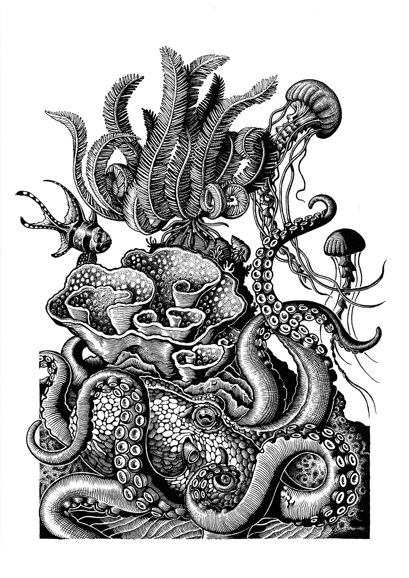 Series Of 3 Pen And Ink Drawings On Behance