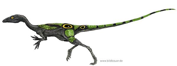 Dinosaur and Archosaur illustrations on Illustration Served