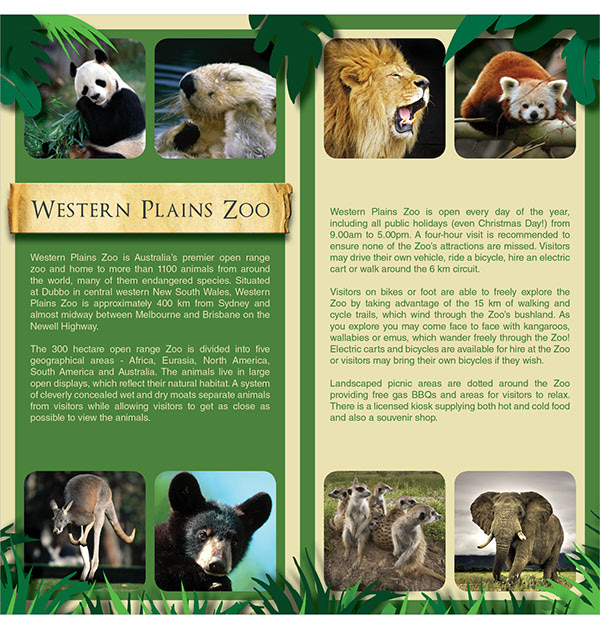 Brochure Design Taronga Western Plains Zoo On Behance