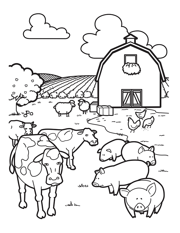 Iowa Soybean Association Coloring Book on Behance