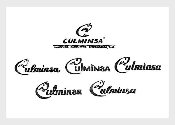 Culminsa / Corporate Identity on Behance