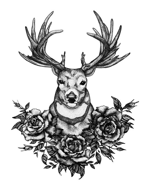 dear deer on behance