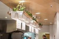 Junzi Kitchen (Collaboration Work) on RISD Portfolios