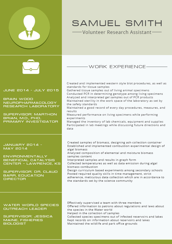 Functional Resume Format 2016 On Behance