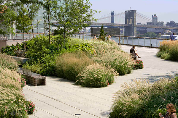 water street elevated acre