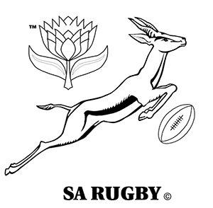 Springbok Rugby, South Africa on Behance