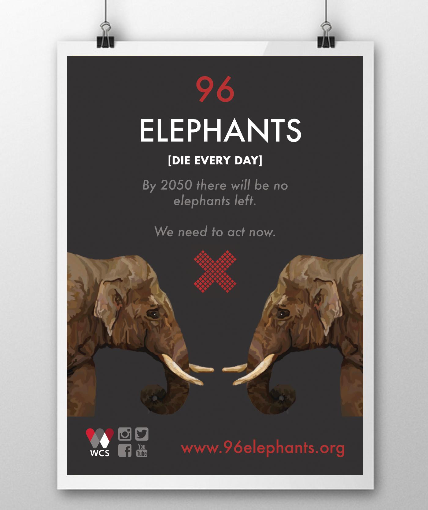campaign promotion 96 elephants