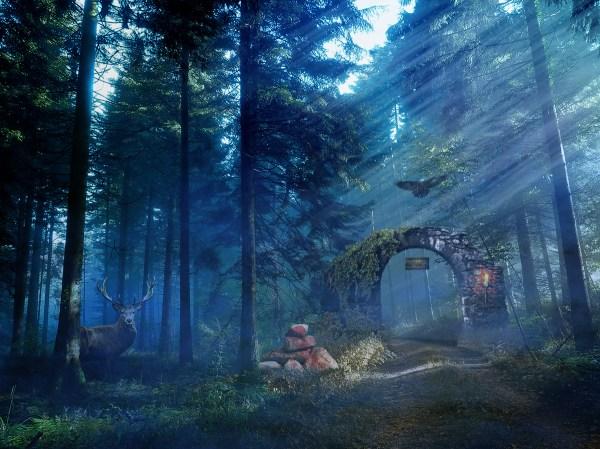 Medieval Forest Behance