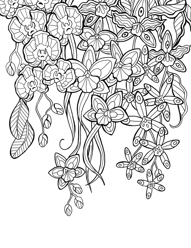 Coloring Book Selection Sketch Coloring Page