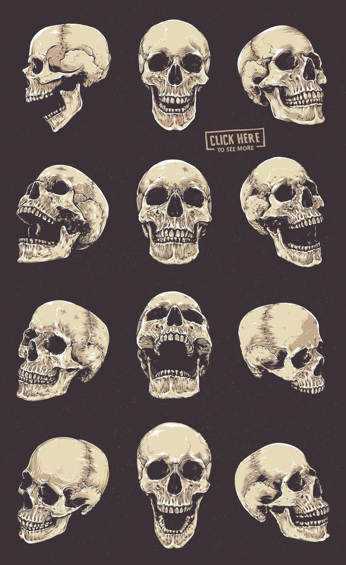 Anatomic Skulls