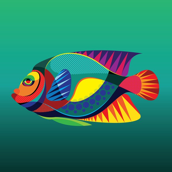 Tropical Fish Graphic Art