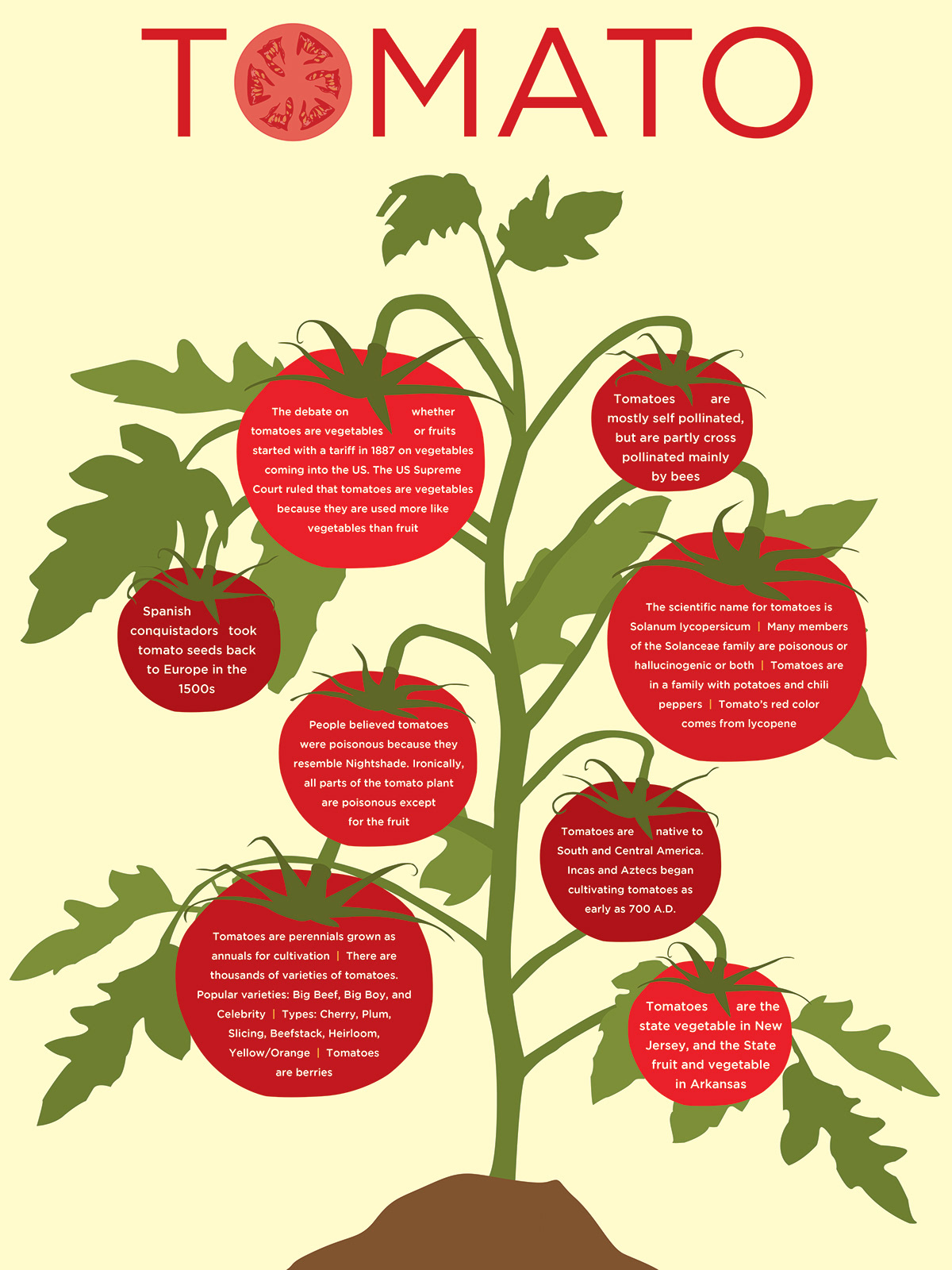 Tomato Infographic on Behance