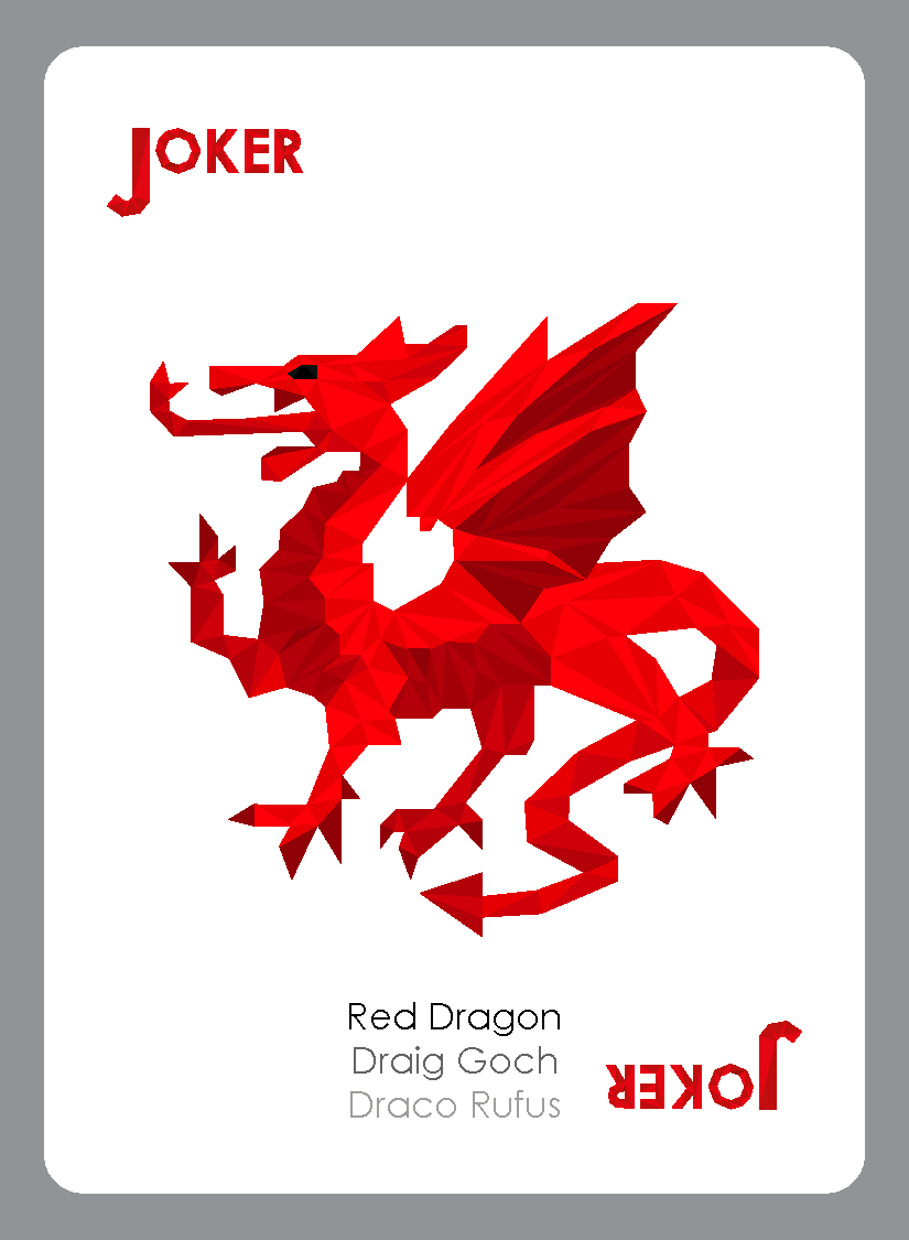 GeometricIllustration Welsh Wildlife Playing Cards on Behance