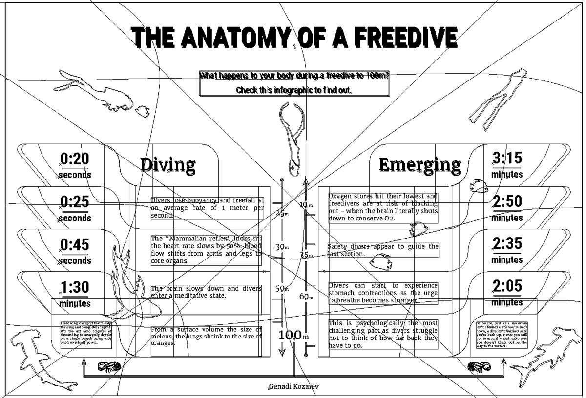 THE ANATOMY OF A FREEDIVE on Behance
