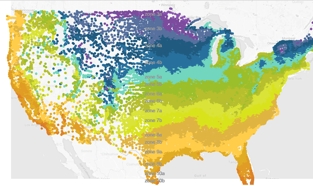 Below is the usda planting zones map, also known as the usda hardiness zone map. Us Climate Planting Zone Visualizations On Behance