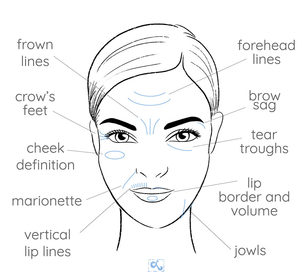 Face Chart Illustration On Behance