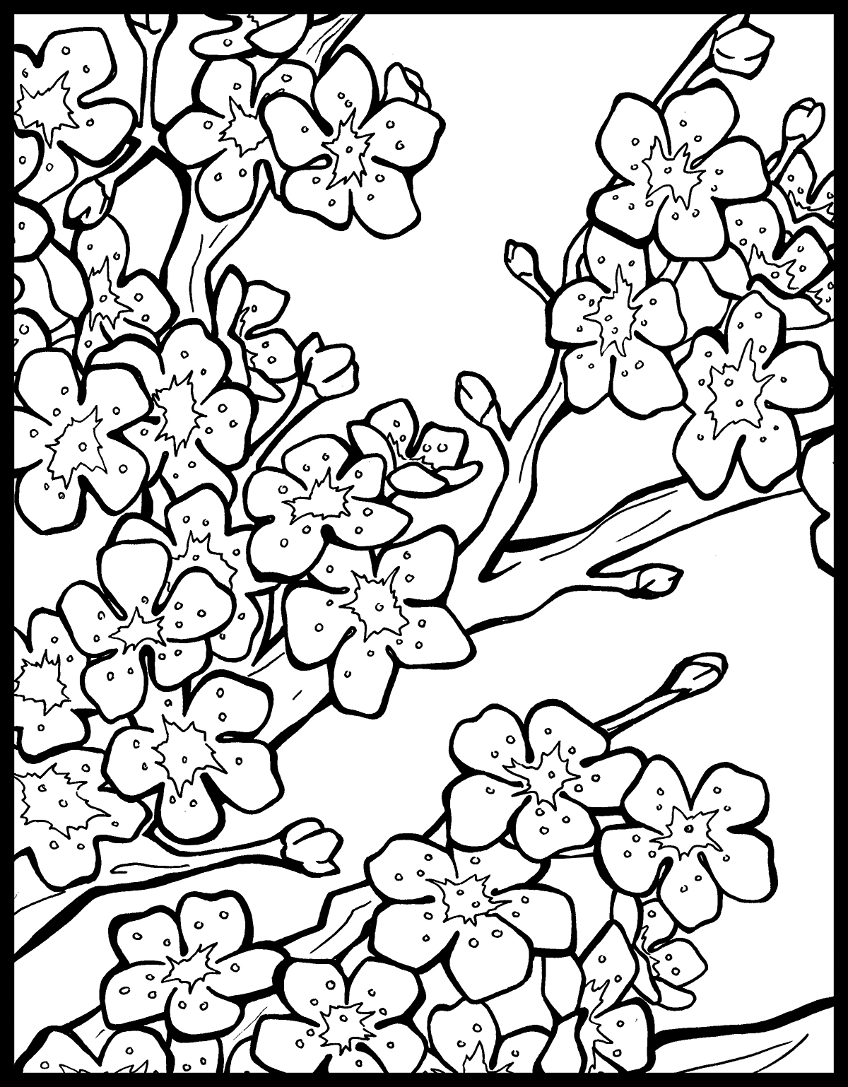 Chinese Lantern Festival Coloring Book