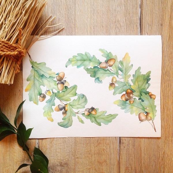 Watercolor Oak Illustration Behance