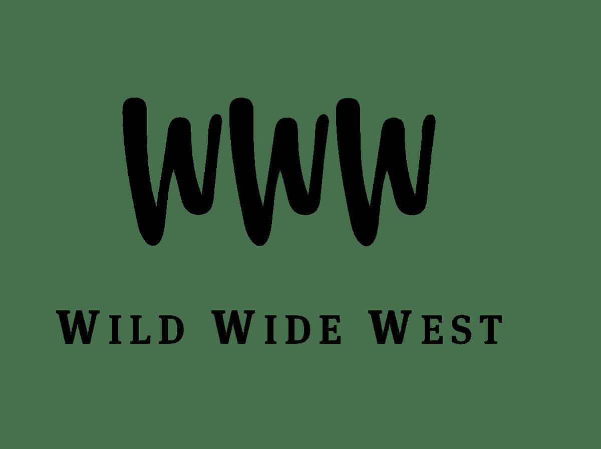 Bachelorarbeit Wild Wide West on Behance