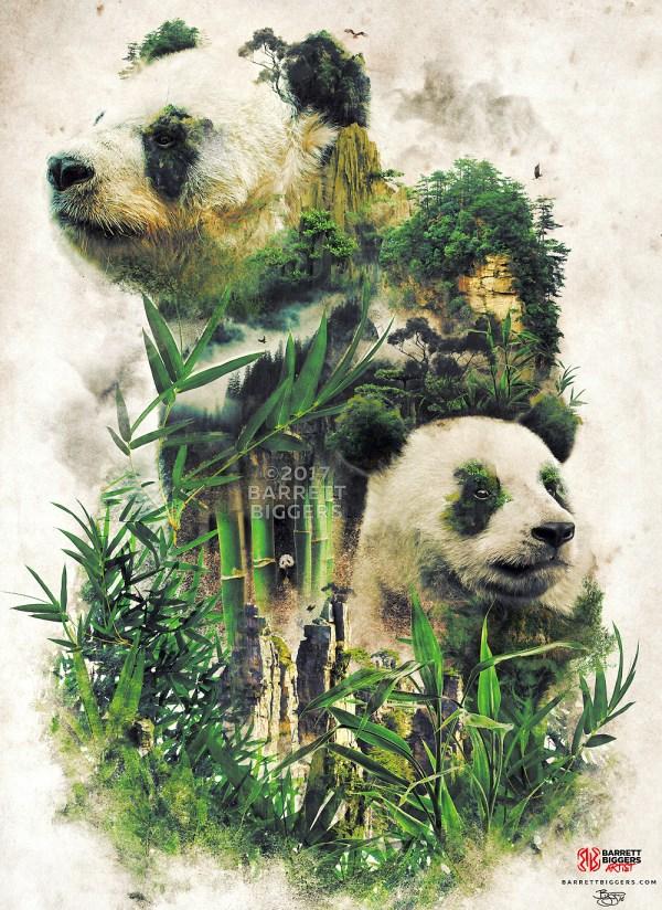 Animal Surrealism Nature