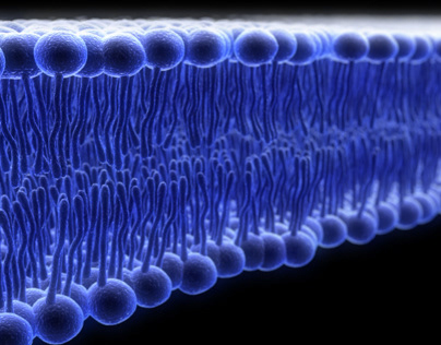 OpenCEL - Cell Lysis Technology on Behance