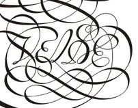 Van den Velde Script font on Behance