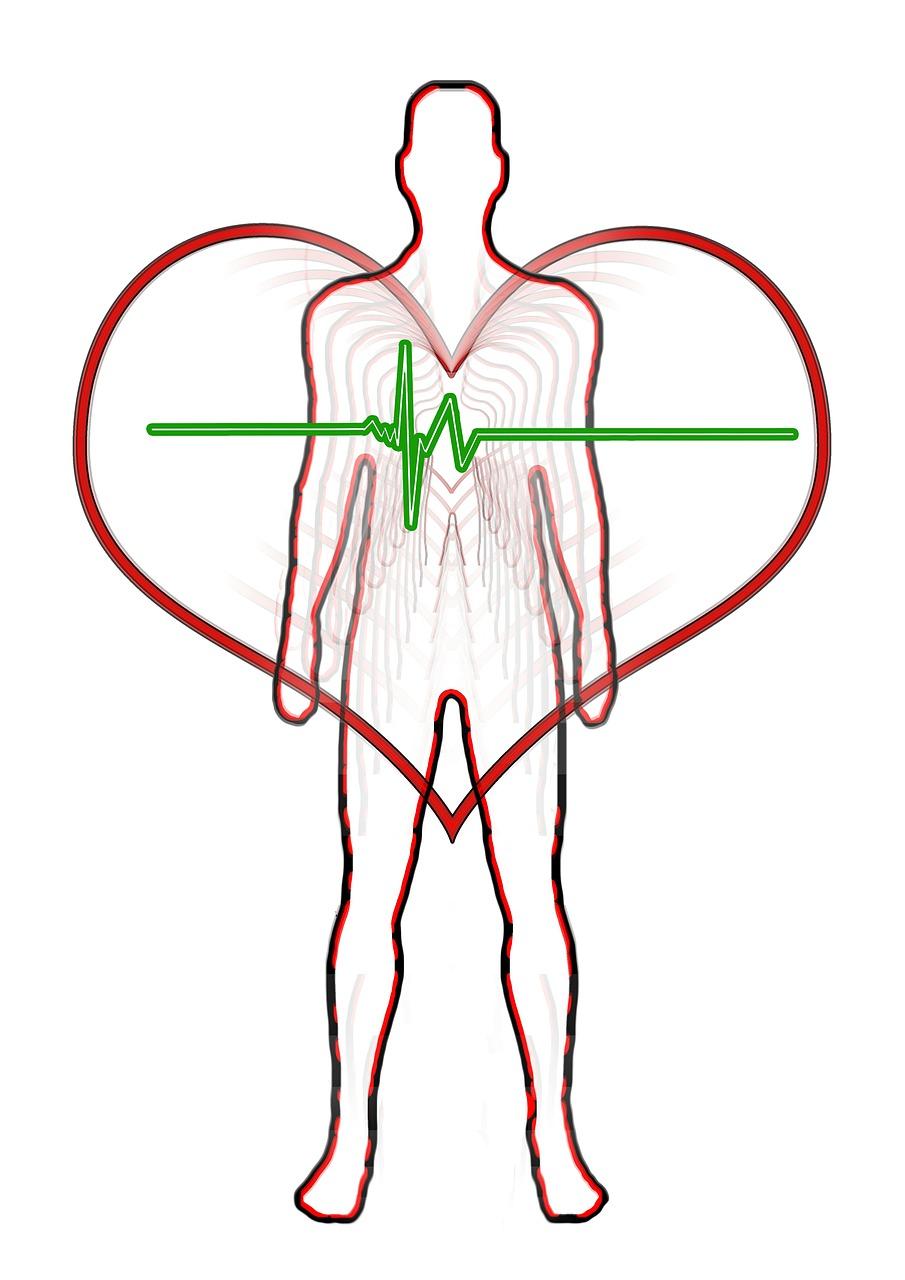 想像以上に効果の高い武術の動作。血流を促して体幹をトレーニングしたい人はこれ post thumbnail image