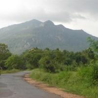Ritigala Mountain - Sri Lanka - රිටිගල රක්ෂිත වනාන්තරය
