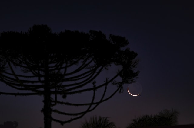 magazine-miracles-happen-rituel-nouvelle-lune-exterieur