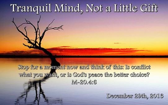 TranquilMind122913