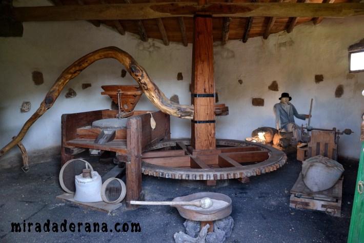 Museo Agrícola El Patio Lanzarote