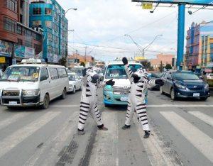 Cebras aprenden seguridad ciudadana