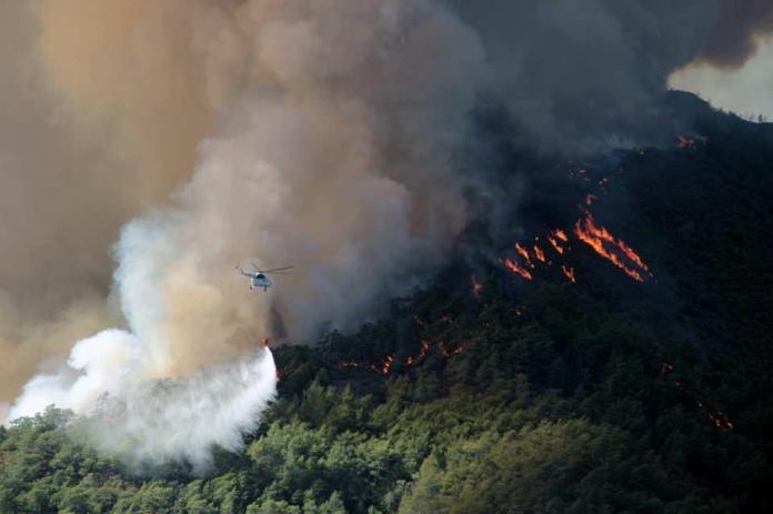 <p>27 Haziran'da Marmaris'te çıkan orman yangını rüzgarın da etkisi ile büyüyerek geniş bir alana yayıldı.</p>