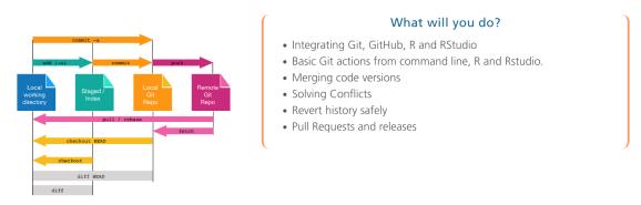Mirai upcoming workshop Git & GitHub (for the R User)