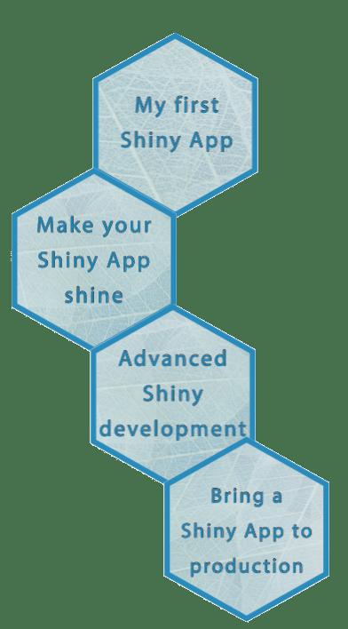 Full shiny workshop offer