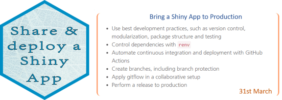 Mirai advanced shiny workshops