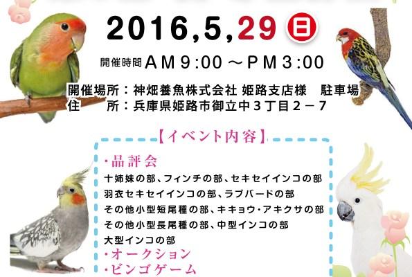 全日本洋鳥クラブ 春の品評会