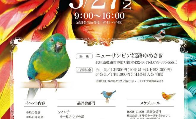 全日本洋鳥クラブ
