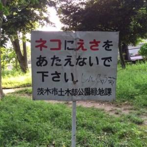 2014_ 5_ 6_23_ 6-4