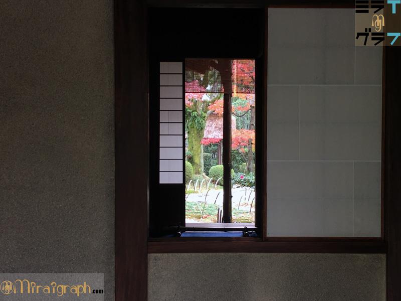 有楽苑の襖から覗く紅葉