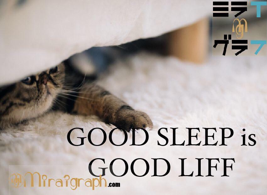 『あなたのより良い睡眠』を一問一答で解決!! 9月3日はベッドの日『今日というミライグラフ365』