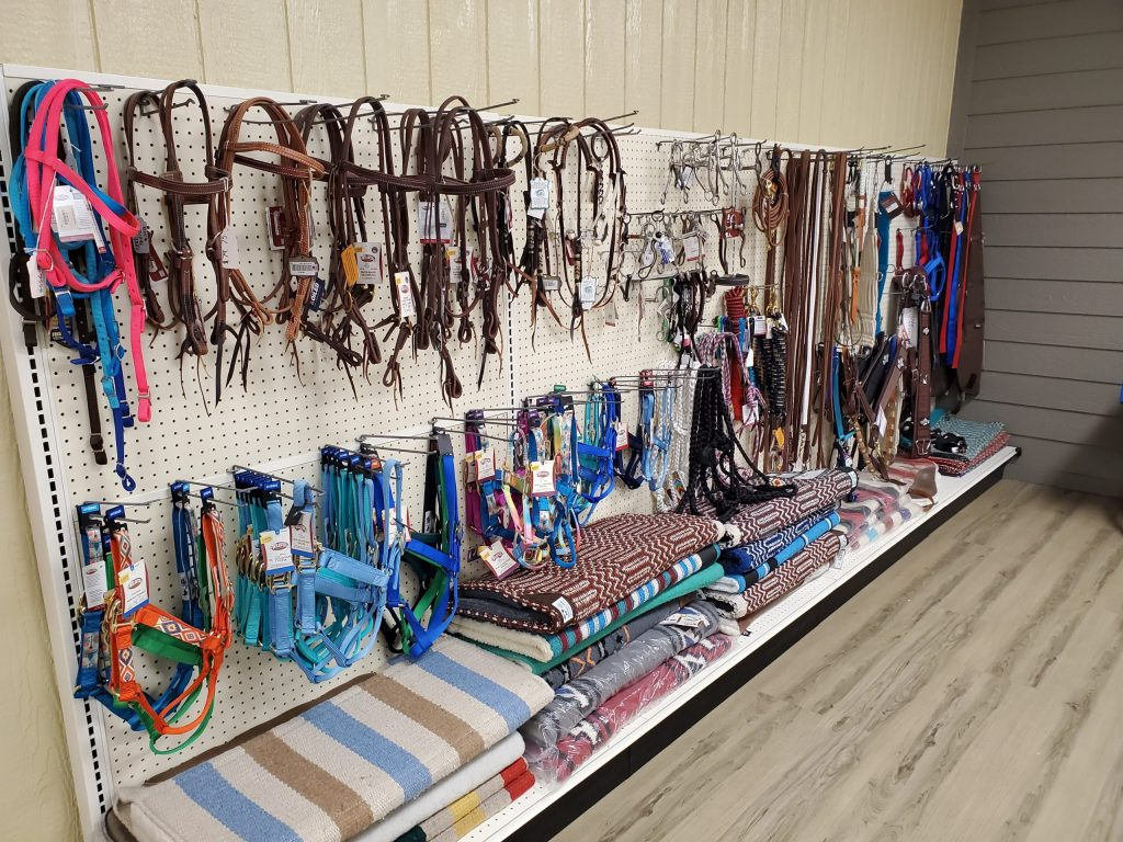 Equine or horse tack on Sale Now