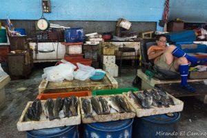 Pescados en el mercado de Ipoh