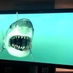 3d_shark_600
