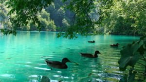 plitvice-lakes-national